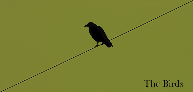 Image of minimalistc The Birds poster