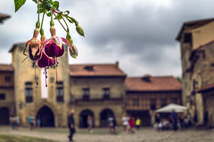 SANTILLANA del MAR (CANTABRIA). (JuanCarlossony) Tags: flor gente pueblo nubes casas colores paisaje bokeh medieval plaza square landscape colors houses clouds village people flower sony a58 1855mm