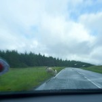 typical view from a car on The Isle Of Skye thumbnail