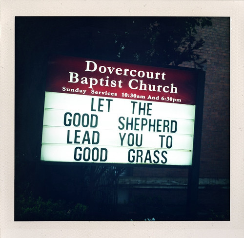 Let the good shepherd lead you to the good grass