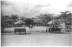 Anglų lietuvių žodynas. Žodis Rangoon reiškia n Rangūnas (Birmos sostinė) lietuviškai.