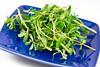 Purslane Tomato Salad with White Peach Dressing (norecipes) Tags: summer tomato salad vegan vegetarian hierloom purslane