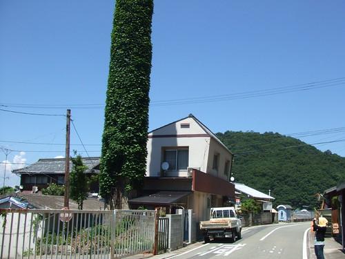 大崎上島 町の風景 写真2