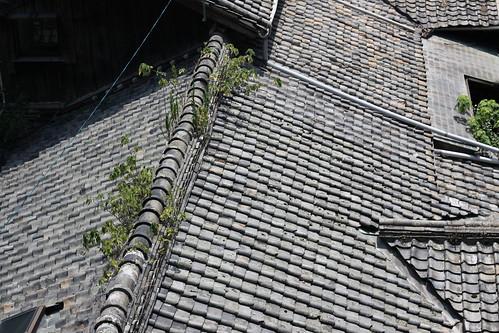 Shofukuji  rooftops