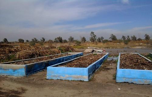 Pilas de vermicomposta, Bordo de Xochiaca