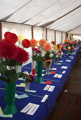 Tables of floral displays