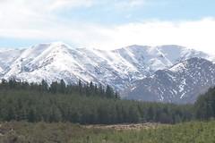 Ida Range