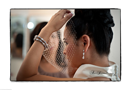 Beautiful bride with netted veil-1.jpg