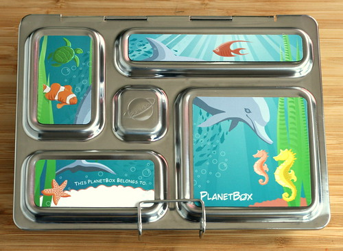 PlanetBox with ocean magnets