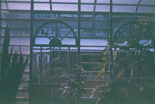 家裡陽台F1000012