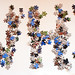 Puzzle - Bill Winder