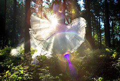 Wonderland : Wild Thing (Kirsty Mitchell) Tags: fairytale forest dawn woods circus magic fantasy lensflare sunburst crown wonderland storybook wherethewildthingsare stilts enchanted kirstymitchell thelightwasthatofdreams elbievaneeden katieisalegend iamamiwhoamiinspired
