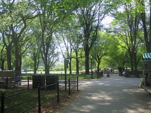 Central Park _ 7294
