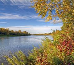 Red Deer River [EXPLORED] (Matthew P Sharp) Tags: autumn canada fall canon explore alberta 7d hdr reddeer explored canon7d mygearandme