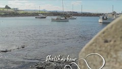 Tourism Shellharbour