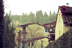 Florentian rooftops (zaliazolyte) Tags: trees italy digital florence rooftops kodak calm