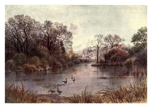 004-El lago-Kew gardens 1908- Martin T. Mower