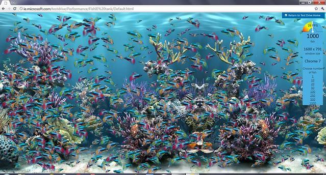 FishTank1000_Chrome7_0_529_Canari