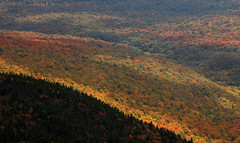Camel's Hump: Cascading stripes (Shahid Durrani) Tags: fall colors vermont camels hump