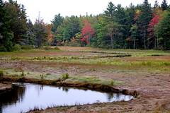 Late September in Maine (Broot - Thanks for a half million views!!) Tags: autumn red fall water river landscape maine scenic estuary september stgeorge mywinners