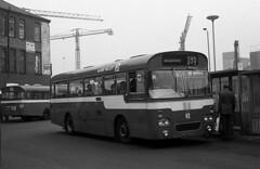 A full day (Fray Bentos) Tags: bus singledecker aecreliance aldershotdistrict aldervalley marshallofcambridge pho590g