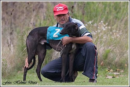 Greyhound Kengyelfuto Sky (HUN)