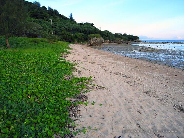 玉城の浜辺