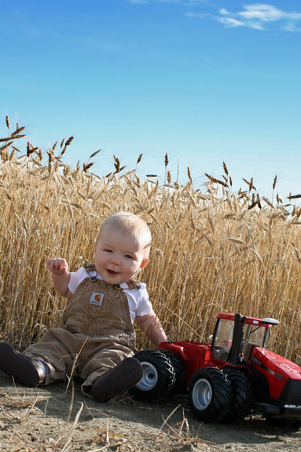 Braden in the Wheat Field