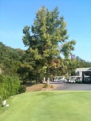 あるゴルフ場