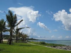 okinawa38 (mari.bleu) Tags: okinawa 沖縄 海 海洋博公園 エメラルドビーチ