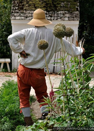 Colonial Gardener