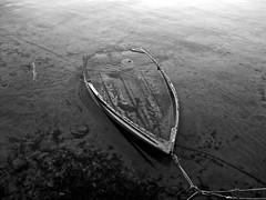 El capitn, el ltimo. (Dolores Balaguer) Tags: ocean sea bw beach water sadness boat spain barco ship bn ibiza fujifilm wreck talamanca