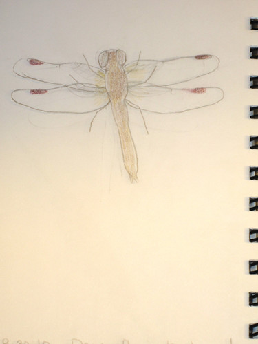 Dragonfly by Me