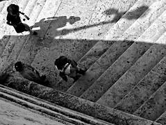 sale l'ombra (Il cantore) Tags: bw man rome roma hat blackwhite women stair ombra steps bn uomo donne scala marble bianconero cappello marmo gradini shafow 15challengeswinner canoniani