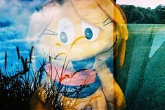 my foxtail + your doll (saviorjosh) Tags: barcelona africa lomo lca xpro lomography spain europe fuji kenya doubleexposure nairobi analogue sensia200 filmswap saviorjosh patorayado