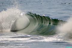 Ventura5745 (mcshots) Tags: ocean california travel sea usa beach nature water surf waves stock tubes socal mcshots swells venturacounty 100810