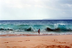 Surviving the Wave (supe2009) Tags: beach hawaii maui mckenna bigbeach