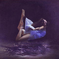 arrivals and departures (brookeshaden) Tags: blue bird fly nest levitation explore workshop teaching bluebird arrival departure frontpage hopeful taught 10910 brookeshaden texturebylesbrumes