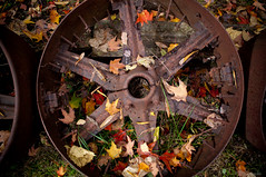 Rusty Wheel & Autumn leaves (Manu_H) Tags: autumn canada automne leaf quebec rusty québec feuille rouille rouillé drummondville centreduquébec smcpda21mmf32al smcpentaxda21mmf32allimited levillagequébécoisdantan drummondvillesouth