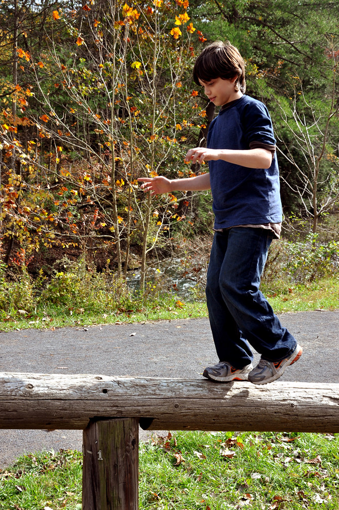 fall walk20