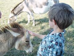 2005_G_07_07_Rainbow Ranch -57 aaa (carlylehold) Tags: ranc