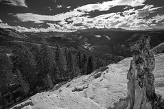 Vista from Quarter Dome (B&W)