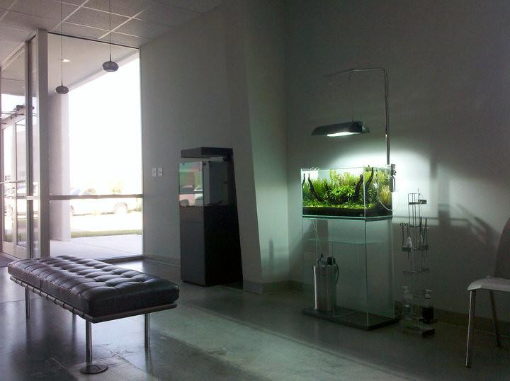 Aquarium Design Group 60-P
