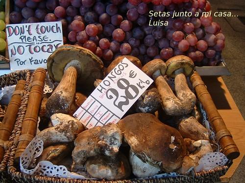 boletus Mercado S. Miguel