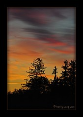 Early Morning Skies (_ Marty Lang _) Tags: morning trees sky ontario silhouette sunrise nikon d90 stouffville macg martylang