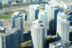 Nakayan's tilt-shift-The tower apartment group of Minato Mirai 21- (pinboke_planet) Tags: canon eos mark 5d yokohama tiltshift mark2 miniaturefake tse90mmf28 nakayan kojinakaya