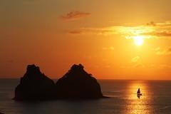 Por de Sol e vela (Joo Vianna) Tags: nature de dolphin natureza dolphins fernando fernandodenoronha joao noronha vianna whbrasil joaovianna