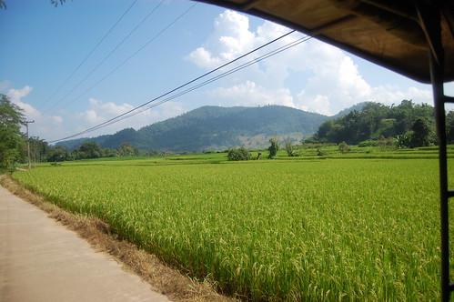 Chiang Mai Trek 3