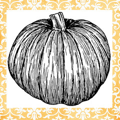 pumpkin sample