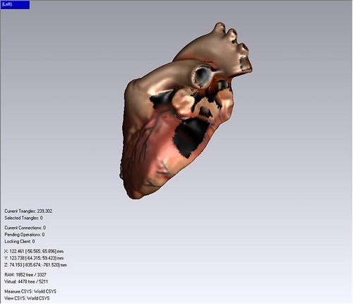 Heart Model 3D Scan